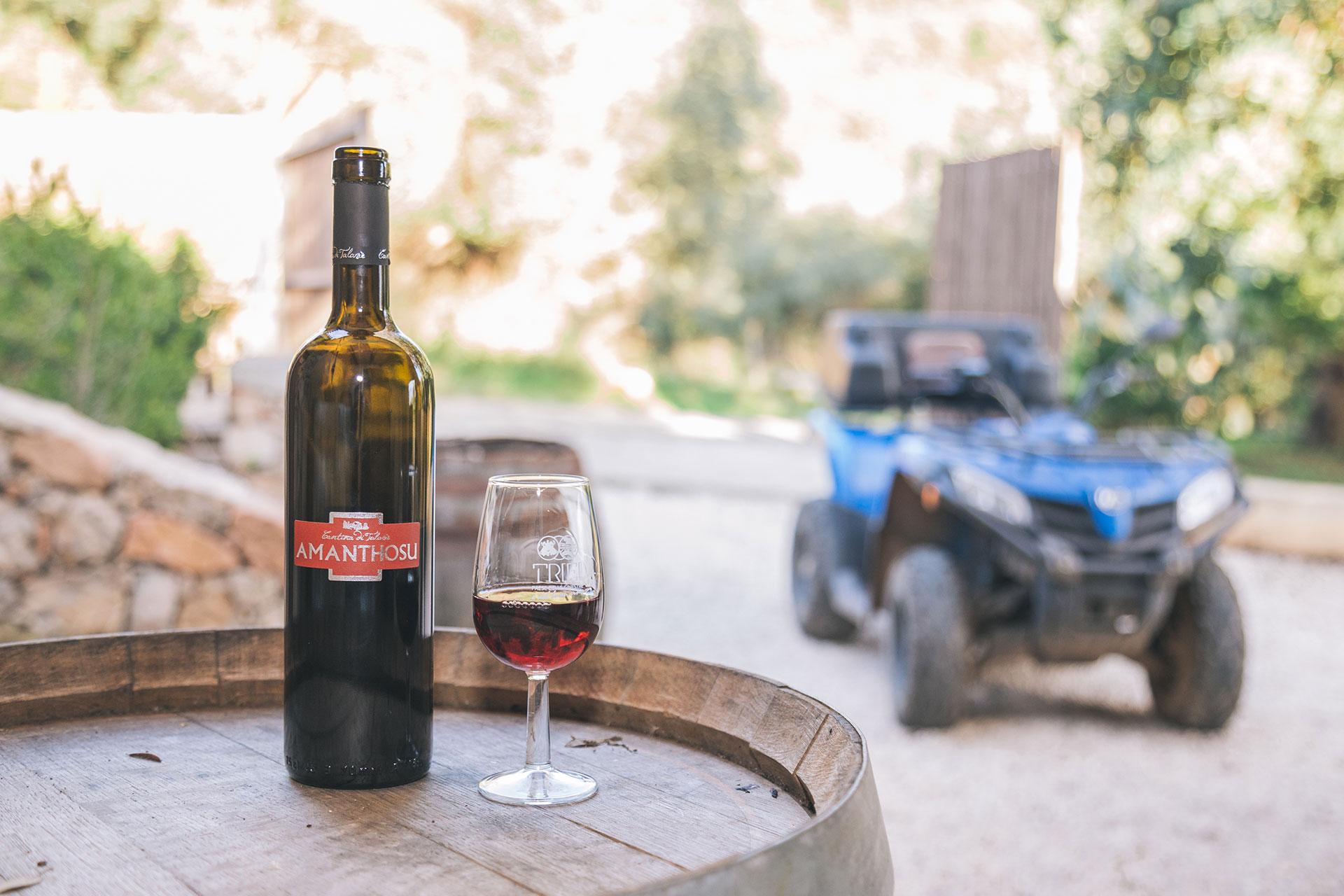Bottiglia di vino con bicchiere e quad